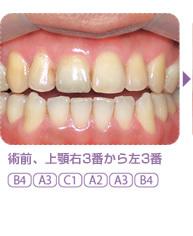 sp3-2.jpg