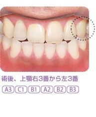 sp3-4.jpg